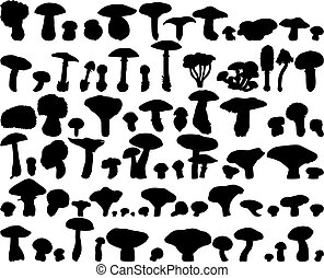 Big collection of different vector fungus silhouettes