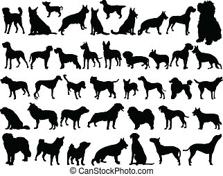 big collection of dogs - vector