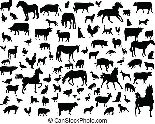 farm animals - Big collection of farm animals - vector