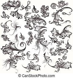 Set of swirl elements for design. Calligraphic