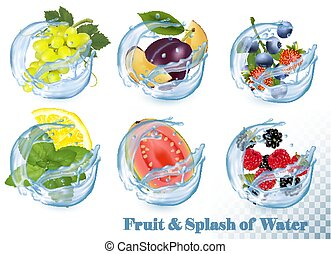 Big collection of fruit in a water splash icons. Grapes, guava, citron, mint, strawberry, plum, blueberry, blackberry, raspberry. Vector Set