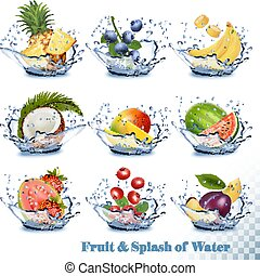 Big collection of fruit in a water splash