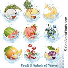 Big collection of fruit in a water splash icons. Pineapple, mango, peach, guava, blueberry, plums, strawberry, granberry, raspberry, blackberry. Vector Set