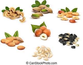 Big collection of ripe nuts