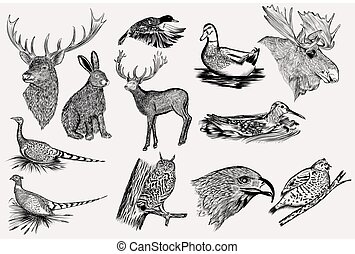 Big collection of vector hand drawn animals for design.eps