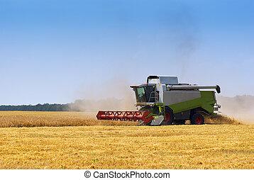 Big  combine working on the Wheat field