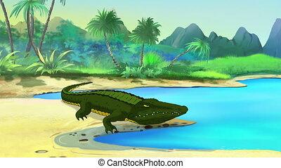 Big Crocodile Open Mouth - Big Nile Crocodile Alligator open...