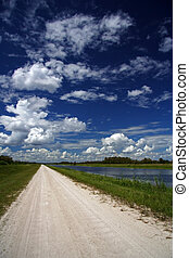 Scenic in the Florida Everglades