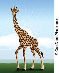 Big-eyed giraffe - Harmonic giraffe against the stylized...