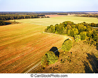 Big field after harvest aerial view. Autumn woods