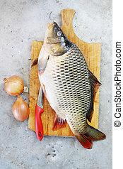 Big fish - carp