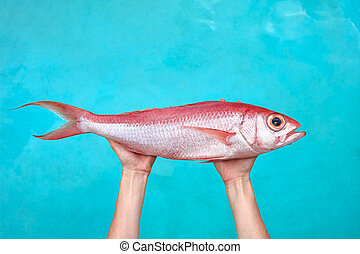 Big fish in hands