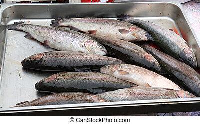big fish on rural market