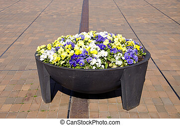 big flower pot in the city square