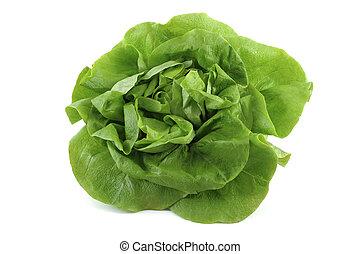 lettuce - big fresh green lettuce on white background
