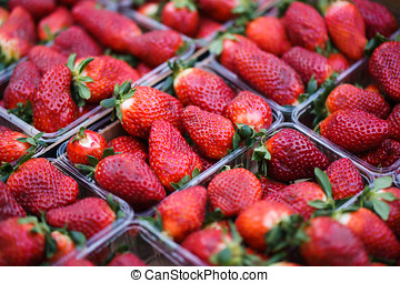 big fresh strawberries in plastic container. closeup
