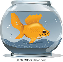 Big Goldfish in a Small Bowl