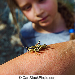 Big grasshopper and cute little girl, nature and clearness,...