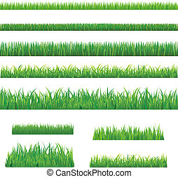 Big Green Grass, Isolated On White Background, Vector...