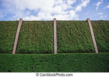 Big green natural wall and blue sky