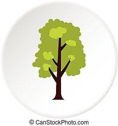 Big green tree icon circle