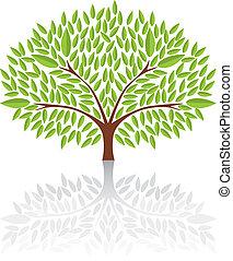 Big green tree Vector Illustration.