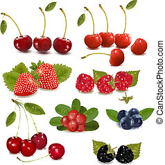 Big group of fresh berries