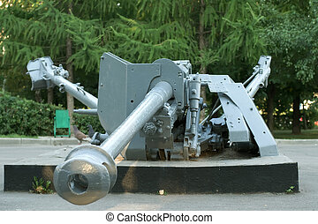 Big gun in park