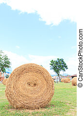 big hay bale rolls in a lush green field and blue sky