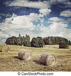 Big hay rolls on a beautiful field. Vintage retro hipster style