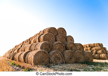 Big haystack at field