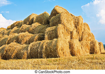 Big haystack at field in in the countryside