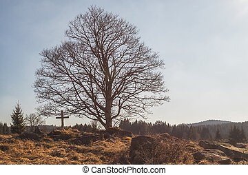 big, hilltop, dávný, dřevěný, kámen, kříž, strom