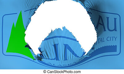 Big hole in Juneau city capital flag - Big hole in Juneau ...