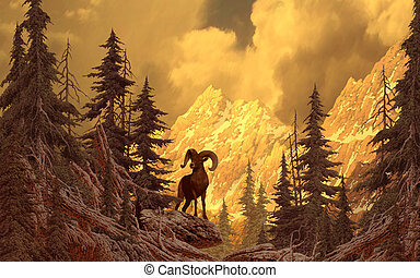 Big Horn Sheep - Image from an original painting by Larry...