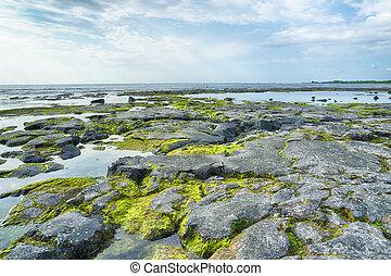 Big Island Hawaii Seascape