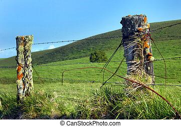Big Island Upcountry Fence