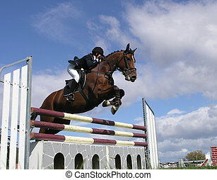 Big Jump - A horse clearing a jump. Taken at the Horse of...