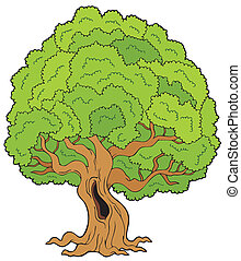 Big leafy tree - vector illustration.