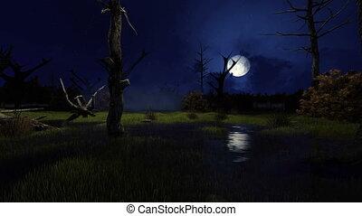 Big moon above creepy swamp at night 4K