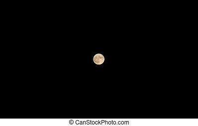 big moon in the dark sky on a night in late autumn