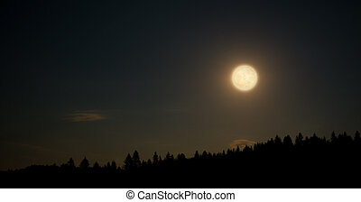 Big moon over forest at night