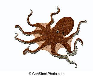 Big octopus - A big octopus
