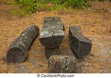 big old wooden table in a forest