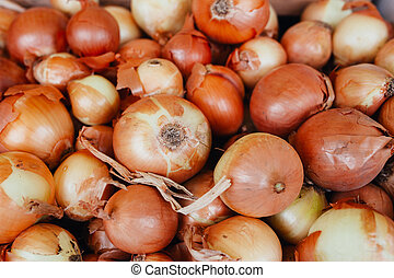 Big onion sell in the market