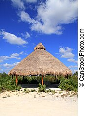 Big Palapa hut sunroof in Mexico jungle Mayan Riviera