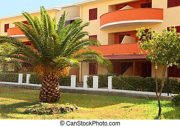 big palm tree growing near to three-story building of sanatorium. balconies of building are orange