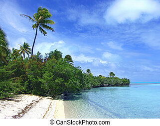 Big Palm - Tropical Coastline