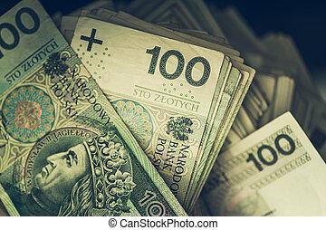 Big Pile of Polish Zloty Cash Money