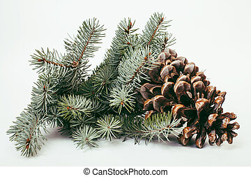 big pine tree cone like decoration to holiday card for...